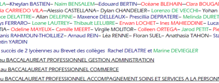 Brevet des Colleges
